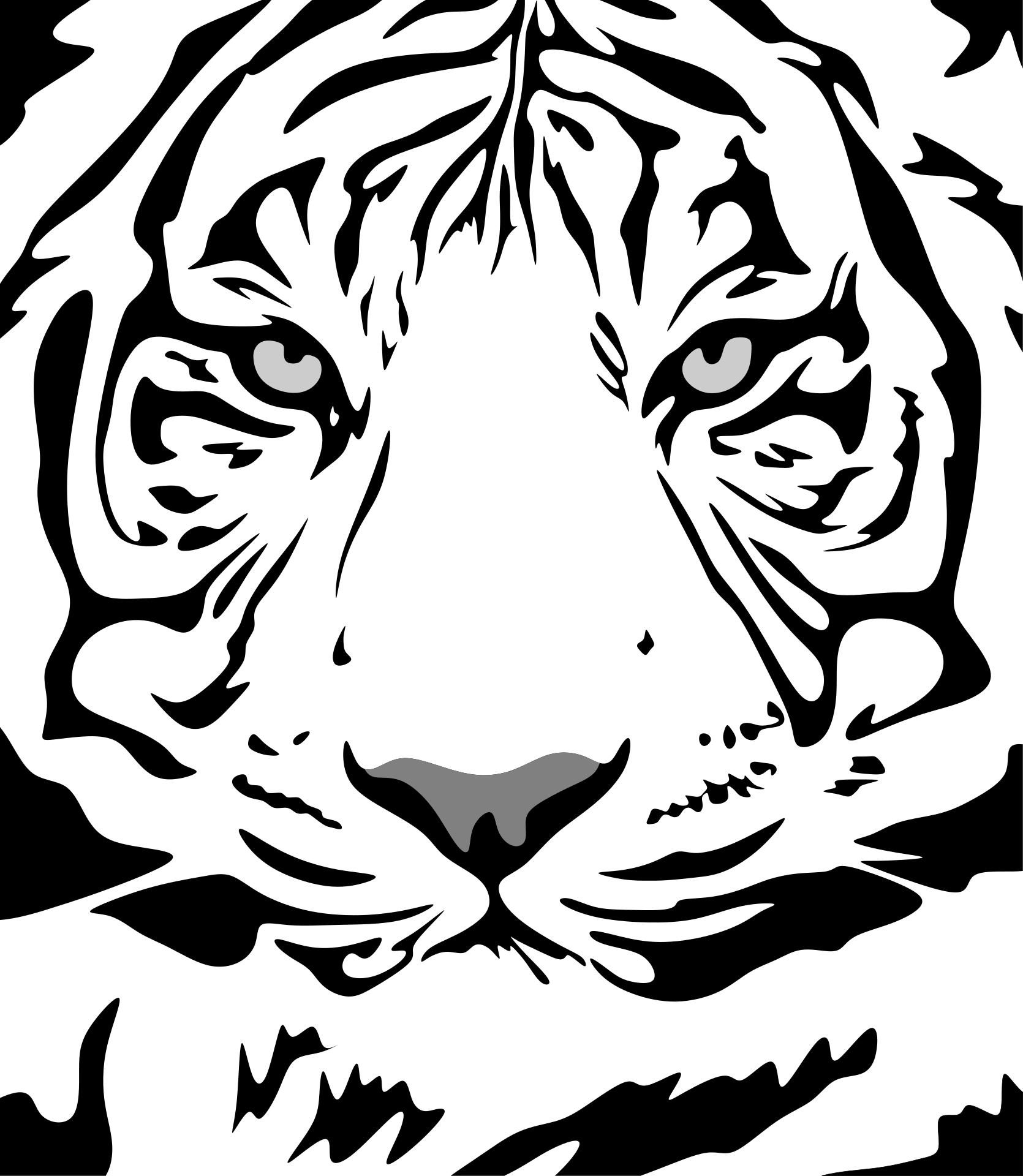 Nur 10% Aller Menschen Sehen Hier Einen Tiger. Gehörst Du
